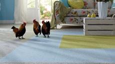 Mit den wohngesunden Teppichfliesen von Tretford lassen sich immer neue Muster legen, da die Fliesen aus Ziegenhaar selbstliegend sind und nicht verklebt werden müssen.