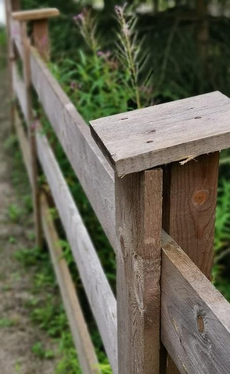 Ungeschütztes Holz