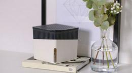 Raumentfeuchter Cube in weiß von Wenko