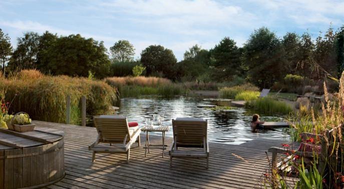 Wasser Reinigung Schwimmteich bauen  Pool Gestaltung