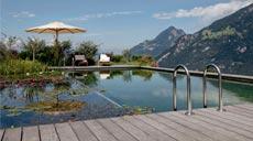 Ein Schwimmteich bietet nicht nur Lebensraum für viele Pflanzen und Tiere, solch ein Teich lädt auch noch dazu ein, im eigenen Garten ein entspannendes und erfrischendes Bad zu nehmen.