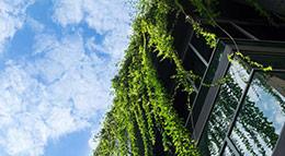 Symbolbild Nachhaltigkeit beim Hausbau