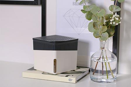 Wenko Raumentfeuchter Cube in weiß
